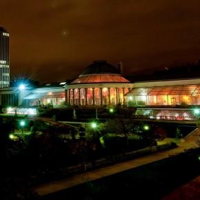 Les Nuits Botanique 2016 // 20 et 21 mai 2016